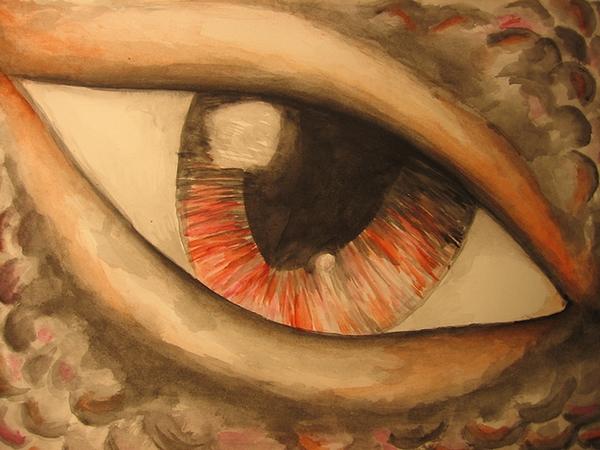 Dračí oko (Papaja)