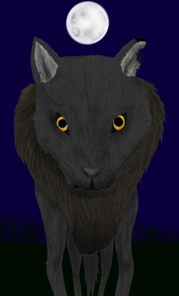 vlk (jokavka)