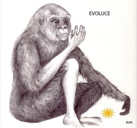 EVOLUCE (SUN)