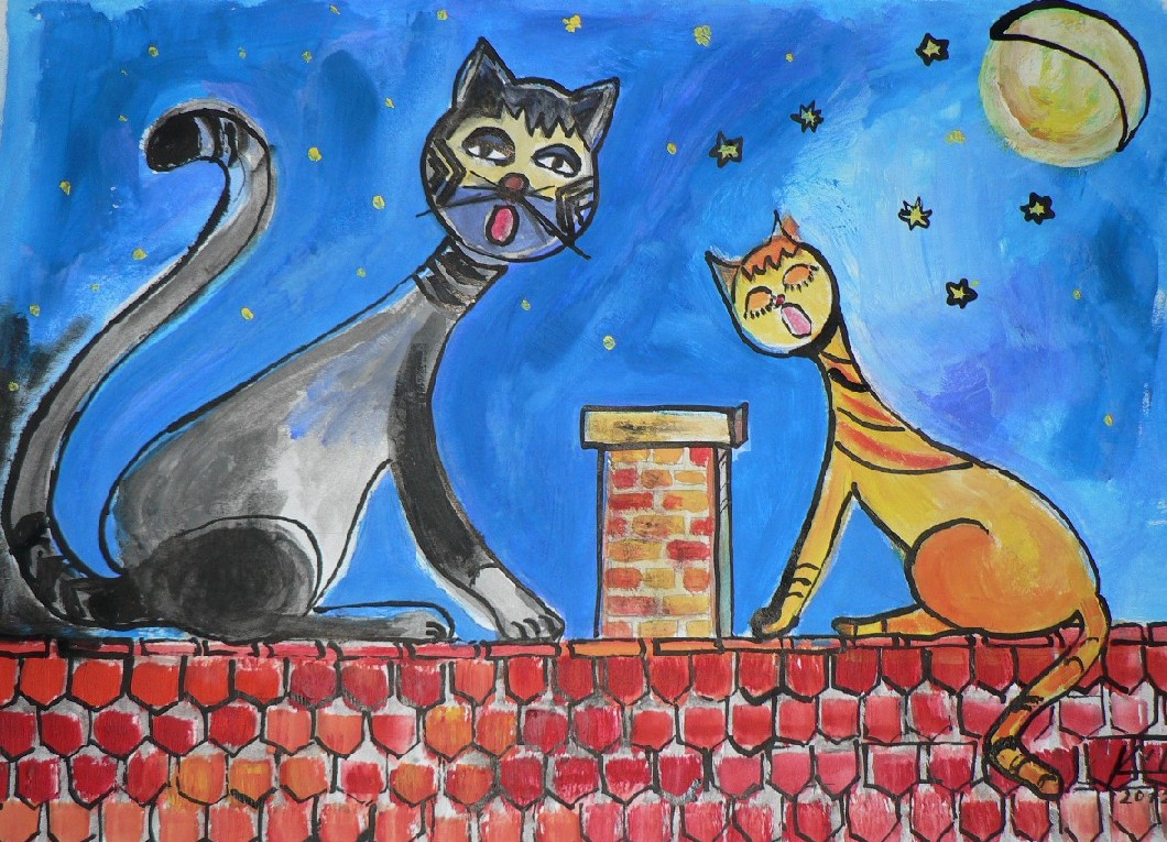 Kočičí nokturno