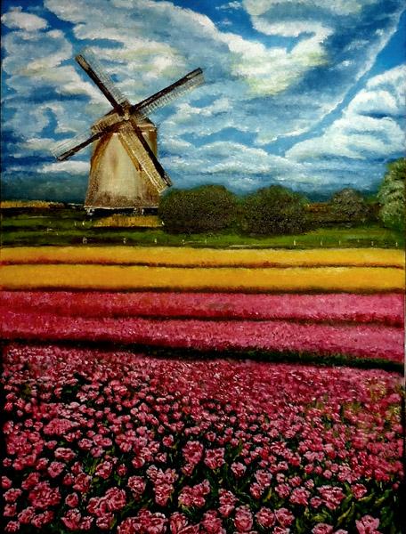 tulipánový vítr závodí s česem (SRejm)