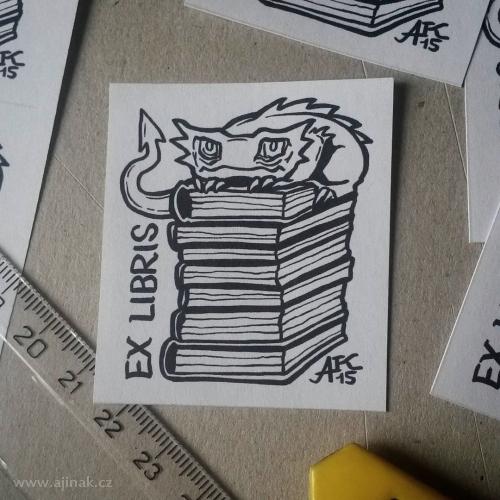 Strážce knih