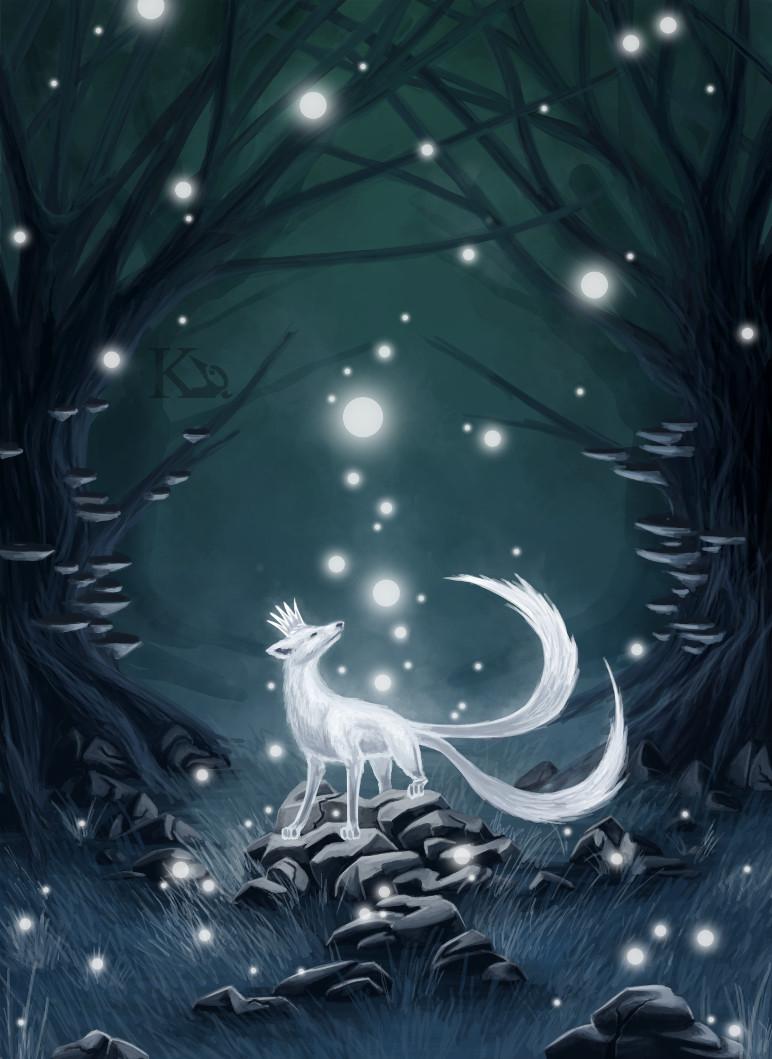 Světlo lesa