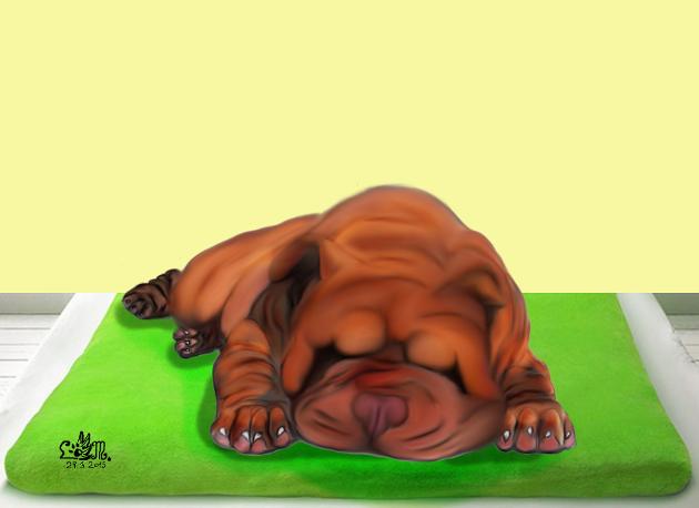 shar pei (Plumosus)