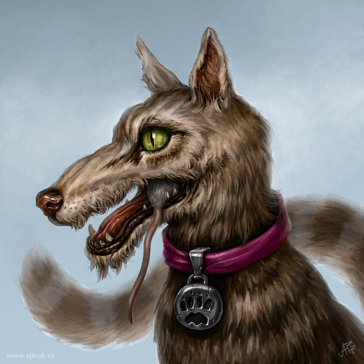 Kočkopes (ajinak)