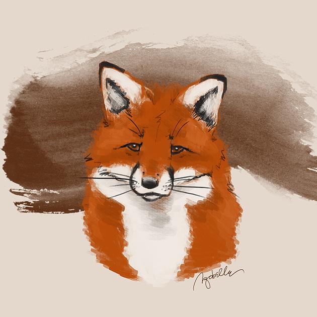 liška (izabelle)