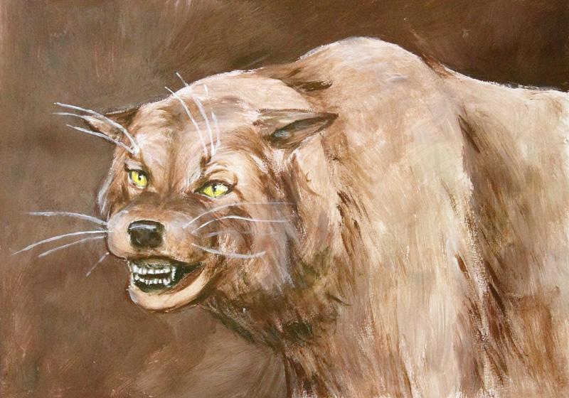 Kočkopes (Saima)