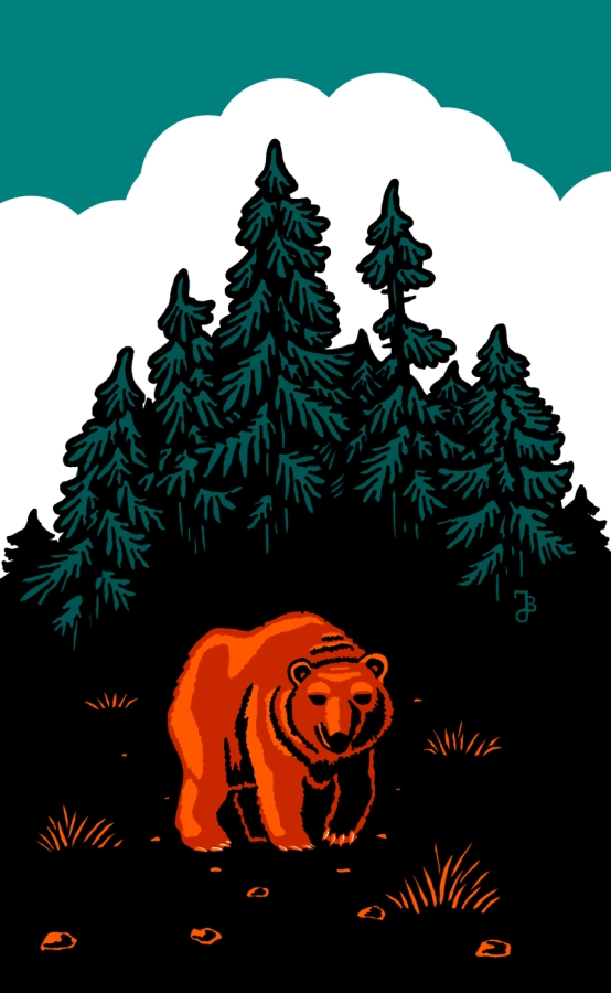 Medvěd (eksmen)