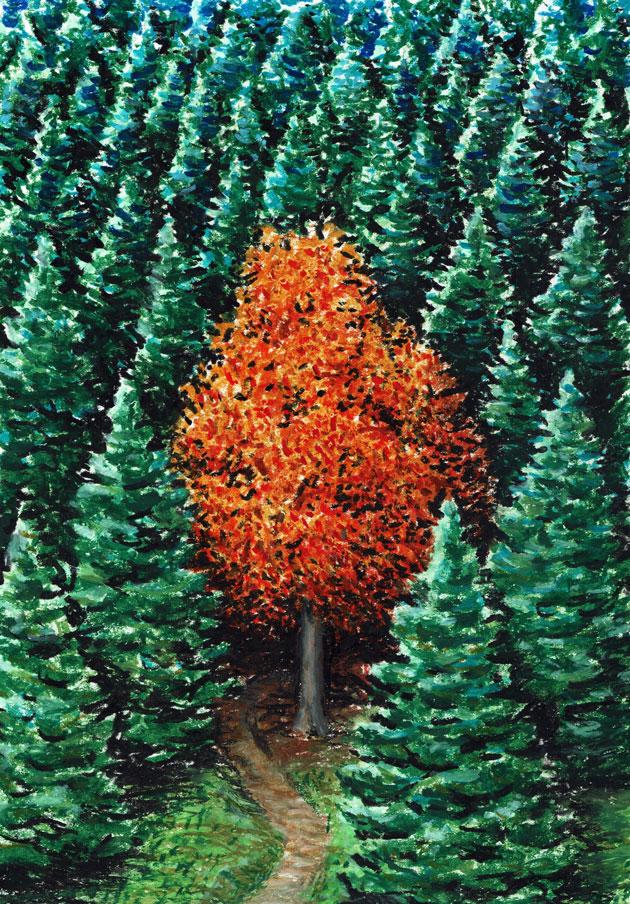 Podzimní kontrast (Neral85)