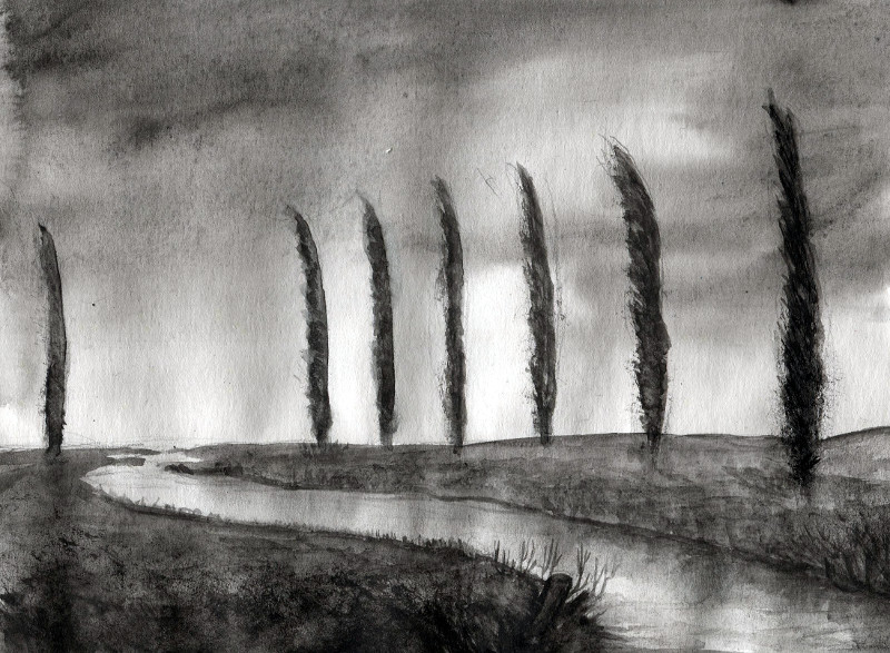 Topoly překračují řeku (Fey)