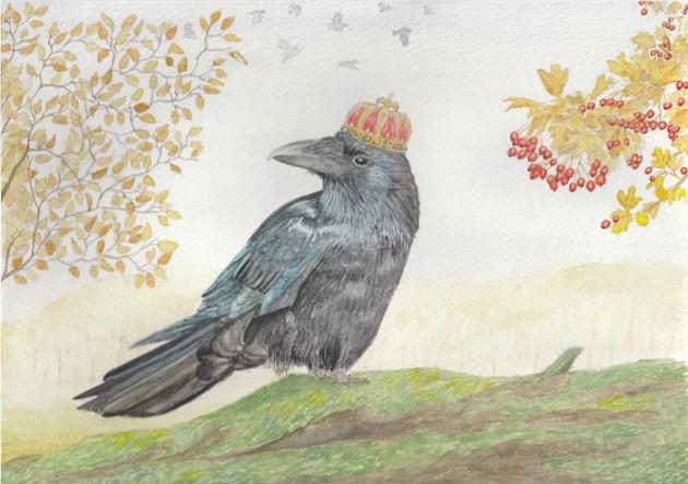 Crow(n)