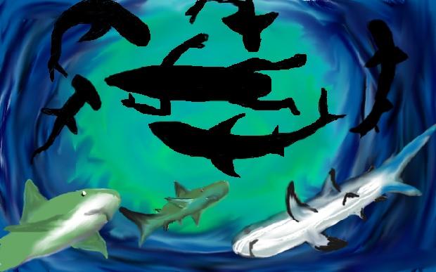 Žraločí sněm (L28N)