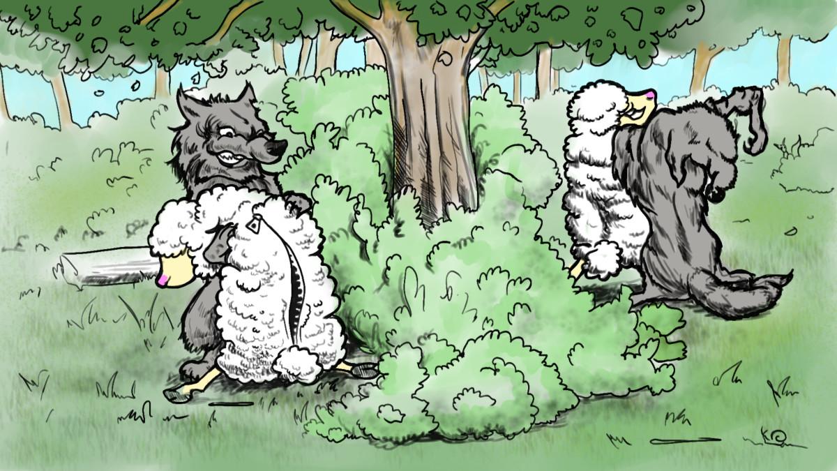 Jak se do lesa volá (Sccion)