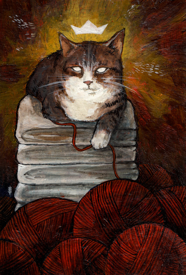 Kočka I. Domácí