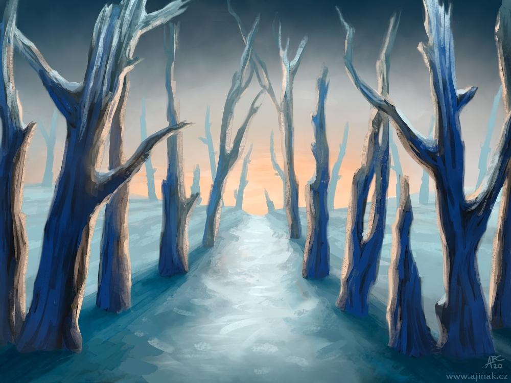 Zimní cesta (ajinak)
